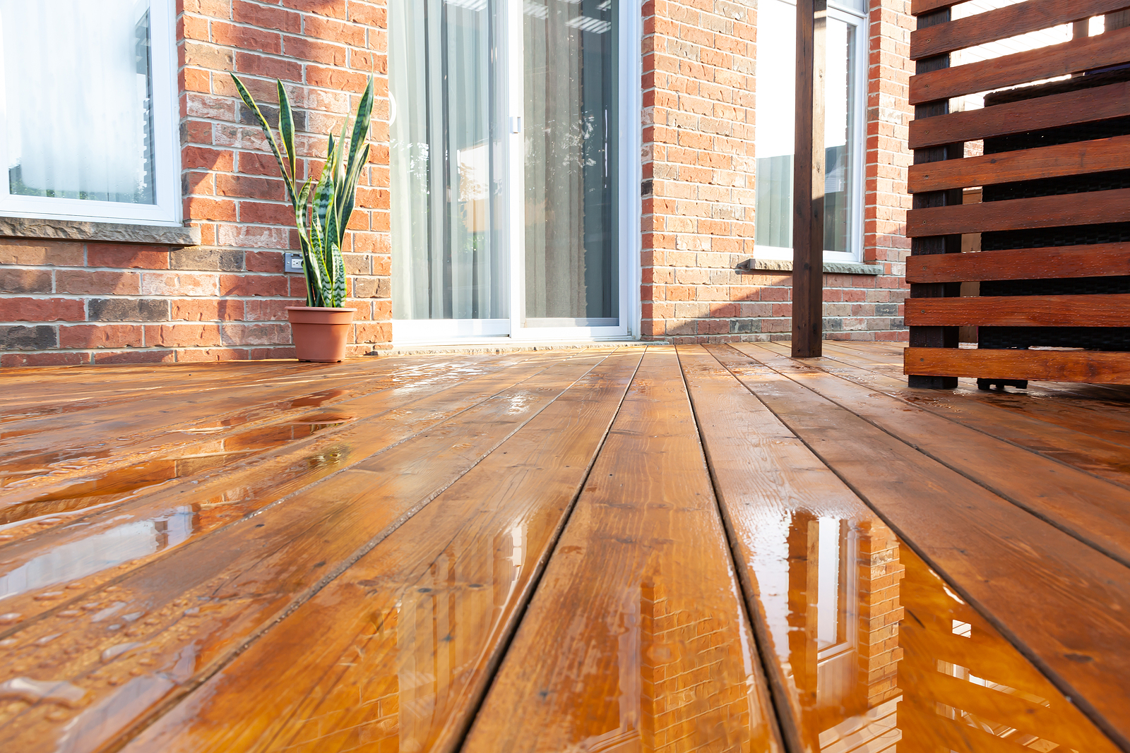 How You Can Make Sure That Your Home Is Warm All Year Round And Also Looks Great With Sydney Timber Flooring